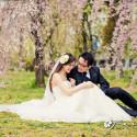 Natalie & Mike (日本 婚紗攝影.April 2013)