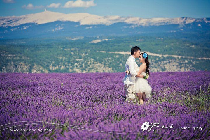 Kimberly & Reggie (法國 婚照共享.August 2013)