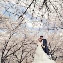 Glori & San (日本 婚紗攝影.April 2014)