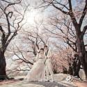Safiya & Donald (日本 婚紗攝影.April 2014)