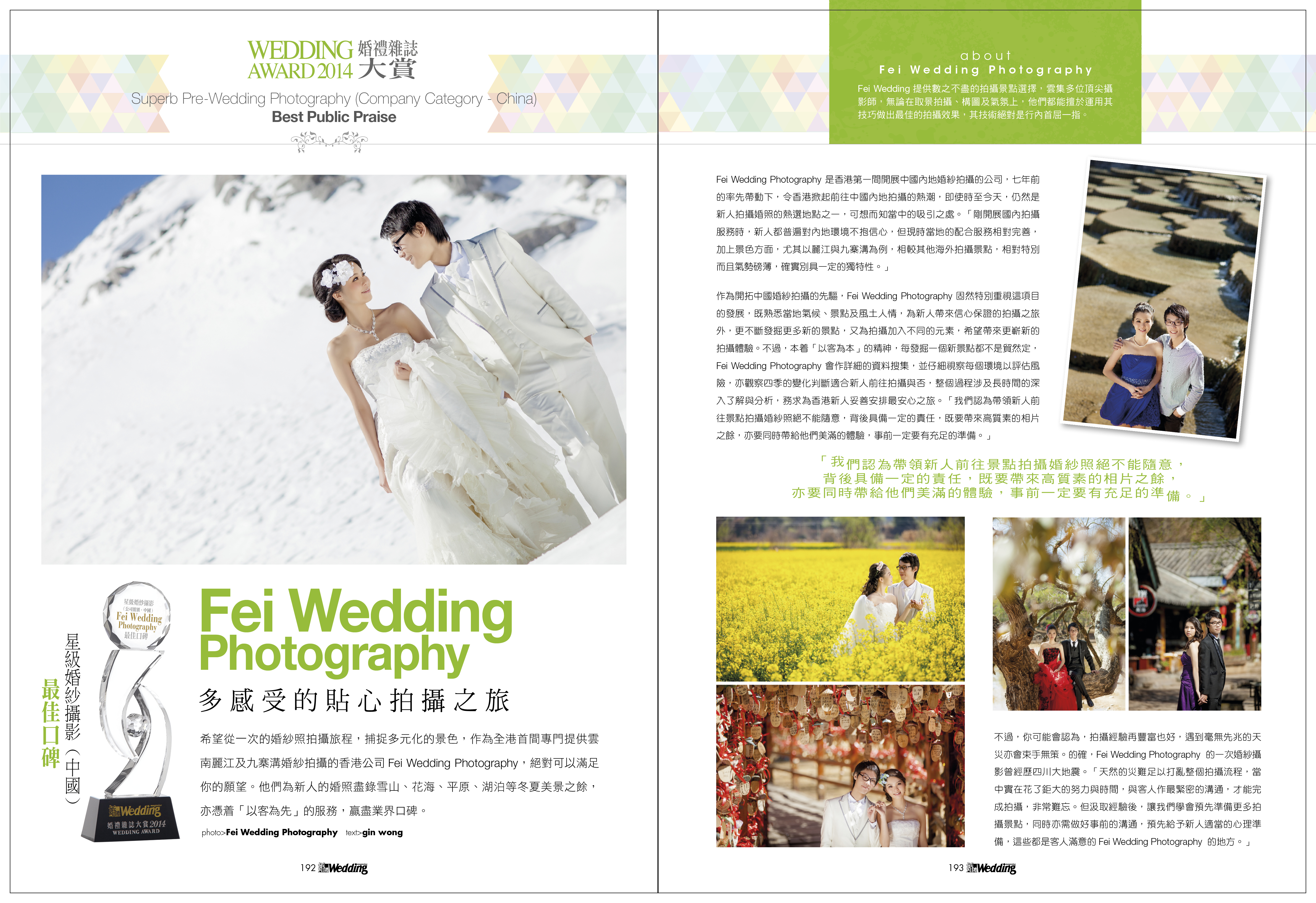 fei wedding 2014 大賞
