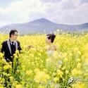 Stephy & Chris (麗江 婚紗攝影.April 2014)