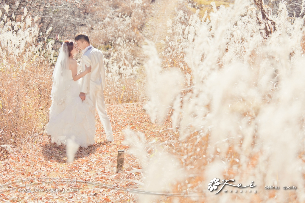 Winnie & Chris (日本 婚紗攝影.October 2014)